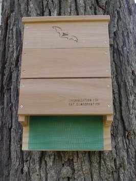 We supply bat boxes approved by the Organization for Bat Conservation.